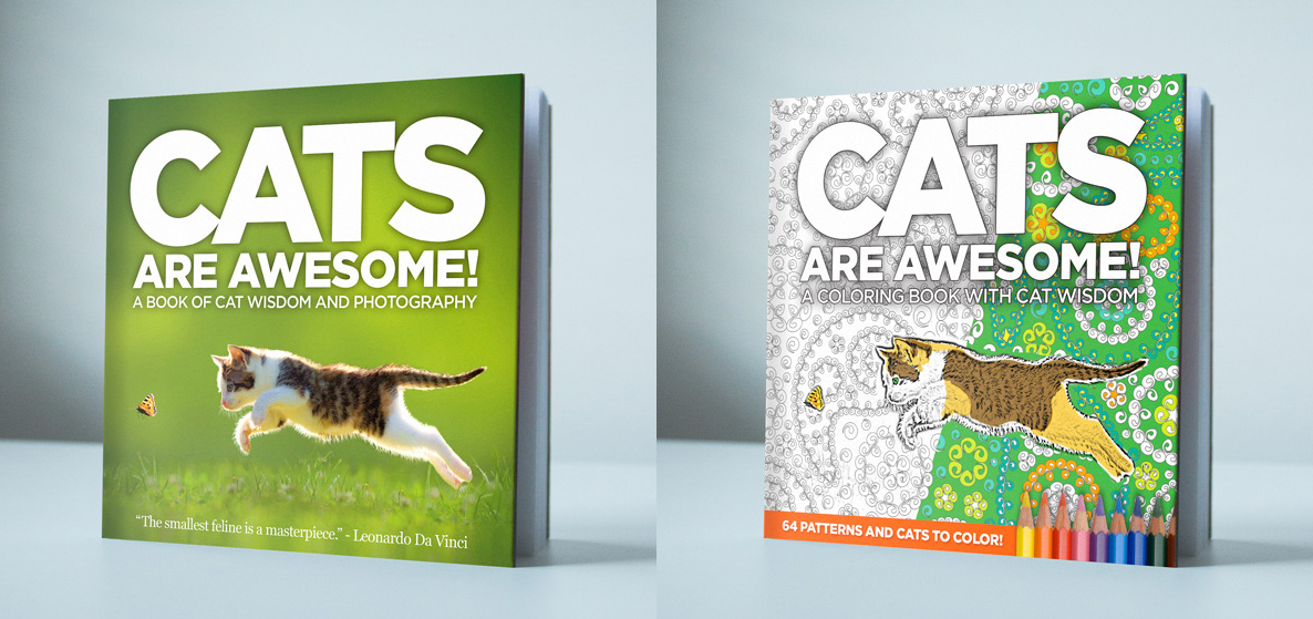 cats-are-awesome-sample-cover
